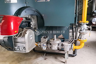30t gas fired boiler - bergfried-gaestehaus.de