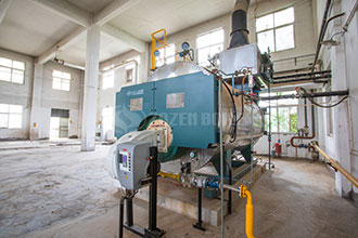 oil fired package boiler good price chain grate steam boiler in