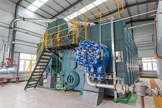 6t natural gas fired boiler dealer singapore