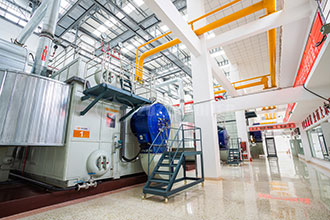 energy saving 20t natural gas steam boiler singapore