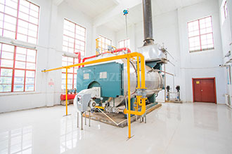 industry gas steam water boiler dealer